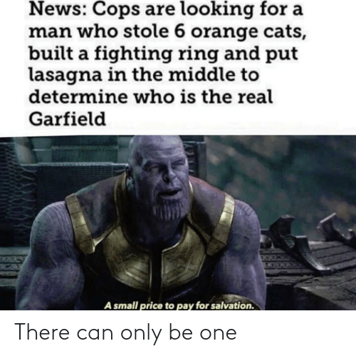 The Middle: News: Cops are looking for a  man who stole 6 orange cats,  built a fighting ring and put  lasagna in the middle to  determine who is the real  Garfield  A small price to pay for salvation. There can only be one