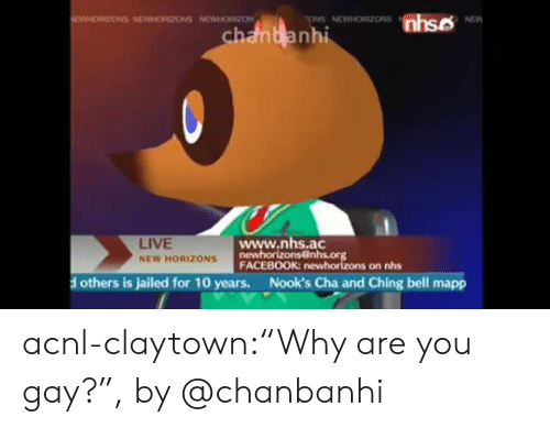 """Facebook, Instagram, and Tumblr: nhso  EWHORIZONS NEWNORIZONS NEWHORZON  ONS NEWNORZONS  NEW  chanbanhi  www.nhs.ac  newhorizons@nhs.org  FACEBOOK: newhorizons on nhs  LIVE  NEW HORIZONS  Nook's Cha and Ching bell mapp  others is jailed for 10 years. acnl-claytown:""""Why are you gay?"""", by @chanbanhi"""