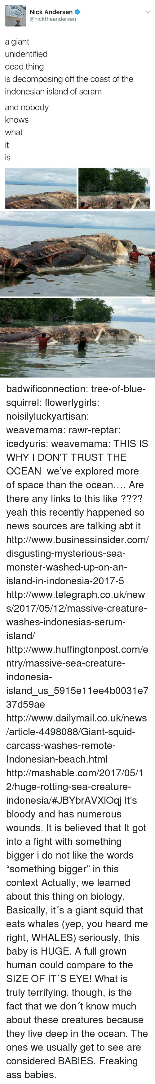 """Ass, Gif, and Monster: NIC  Nick Andersen  @nicktheandersen  a giant  unidentified  dead thing  is decomposing off the coast of the  indonesian island of seram  and nobody  knows  what  is badwificonnection:  tree-of-blue-squirrel:   flowerlygirls:  noisilyluckyartisan:   weavemama:   rawr-reptar:  icedyuris:   weavemama: THIS IS WHY I DON'T TRUST THE OCEAN we've explored more of space than the ocean….   Are there any links to this like ????  yeah this recently happened so news sources are talking abt it http://www.businessinsider.com/disgusting-mysterious-sea-monster-washed-up-on-an-island-in-indonesia-2017-5 http://www.telegraph.co.uk/news/2017/05/12/massive-creature-washes-indonesias-serum-island/ http://www.huffingtonpost.com/entry/massive-sea-creature-indonesia-island_us_5915e11ee4b0031e737d59ae http://www.dailymail.co.uk/news/article-4498088/Giant-squid-carcass-washes-remote-Indonesian-beach.html http://mashable.com/2017/05/12/huge-rotting-sea-creature-indonesia/#JBYbrAVXlOqj   It's bloody and has numerous wounds. It is believed that It got into a fight with something bigger   i do not like the words """"something bigger"""" in this context  Actually, we learned about this thing on biology. Basically, it´s a giant squid that eats whales (yep, you heard me right, WHALES) seriously, this baby is HUGE. A full grown human could compare to the SIZE OF IT´S EYE! What is truly terrifying, though, is the fact that we don´t know much about these creatures because they live deep in the ocean. The ones we usually get to see are considered BABIES. Freaking ass babies."""