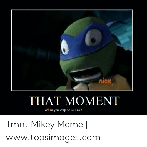 25 Best Memes About Tmnt Mikey Tmnt Mikey Memes