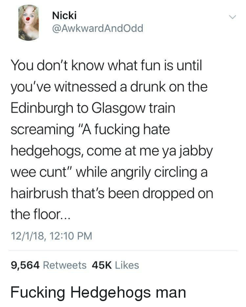 "circling: Nicki  @AwkwardAndOdd  You don't know what fun is until  you've witnessed a drunk on the  Edinburgh to Glasgow train  screaming ""A fucking hate  hedgehogs, come at me ya jabby  wee cunt"" while angrily circling a  hairbrush that's been dropped on  the floor...  12/1/18, 12:10 PM  9,564 Retweets 45K Likes Fucking Hedgehogs man"