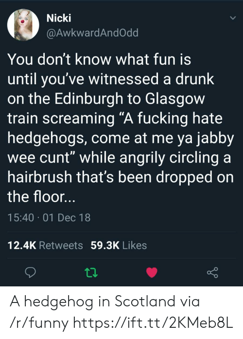 "circling: Nicki  @AwkwardAndOdd  You don't know what fun is  until you've witnessed a drunk  on the Edinburgh to Glasgow  train screaming ""A fucking hate  hedgehogs, come at me ya jabby  wee cunt"" while angrily circling a  hairbrush that's been dropped on  the floor  15:40 01 Dec 18  12.4K Retweets 59.3K Likes A hedgehog in Scotland via /r/funny https://ift.tt/2KMeb8L"