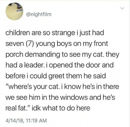 """Children, Memes, and Windows: @nightfilm  children are so strange i just had  seven (7) young boys on my front  porch demanding to see my cat. they  had a leader. i opened the door and  before i could greet them he said  """"where's your cat. i know he's in there  we see him in the windows and hes  real fat."""" idk what to do here  4/14/18, 11:19 AM"""