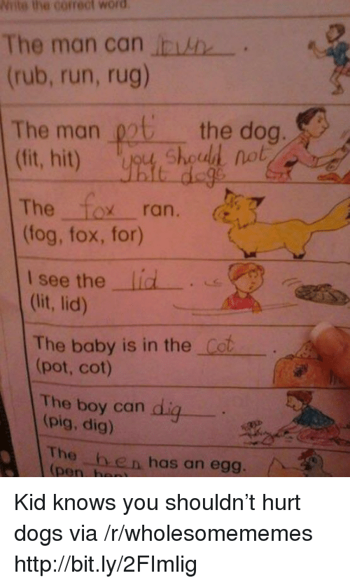 Dogs, Run, and Http: Niite the correct word  The man can  .  (rub, run, rug)  The man 0t the dog  nob  The Tox ran. (  (fog, fox, for)  lid -  see the  (it, lid)  The baby is in the Cot  (pot, cot)  The boy can  (pig, dig)  The he n has an egg.  pen, h Kid knows you shouldn't hurt dogs via /r/wholesomememes http://bit.ly/2FImlig