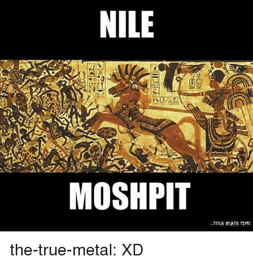 True, Tumblr, and Blog: NILE  MOSHPIT  TECH DEATH TIME the-true-metal:  XD
