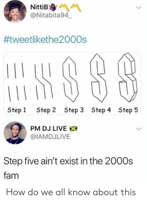 Dank, Fam, and Live: NittiB  @Nitabita94  #tweetlikethe2000s  Step 1  Step 2  Step 3  Step 4  Step 5  PM DJ LIVE  @IAMDJLIVE  Step five ain't exist in the 2000s  fam How do we all know about this