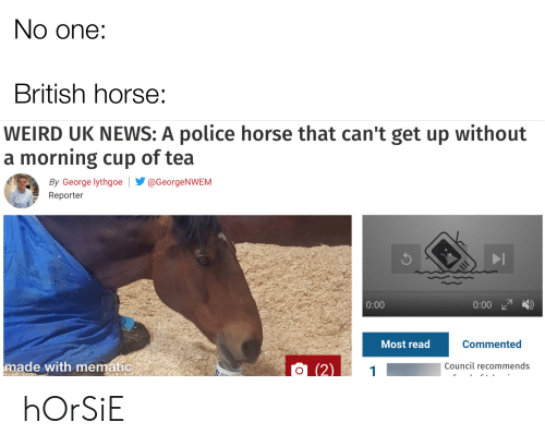 News, Police, and Weird: No one:  British horse:  WEIRD UK NEWS: A police horse that can't get up without  a morning cup of tea  By George lythgoe  @GeorgeNWEM  Reporter  0:00  0:00  Most read  Commented  made with mematic  Council recommends  O (2) hOrSiE