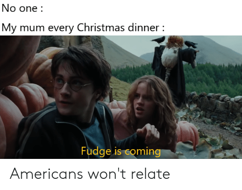 Christmas, Dank Memes, and One: No one  My mum every Christmas dinner  Fudge is coming Americans won't relate