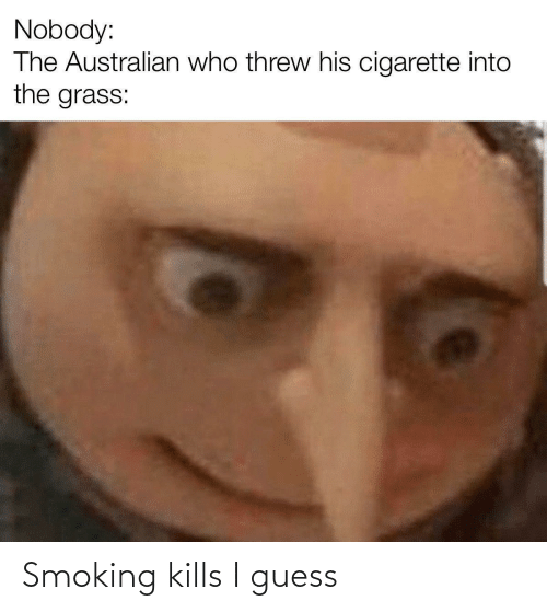 i guess: Nobody:  The Australian who threw his cigarette into  the grass:  %2 Smoking kills I guess