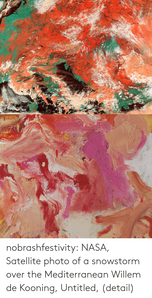 NASA: nobrashfestivity:  NASA, Satellite photo of a snowstorm over the Mediterranean  Willem de Kooning, Untitled, (detail)