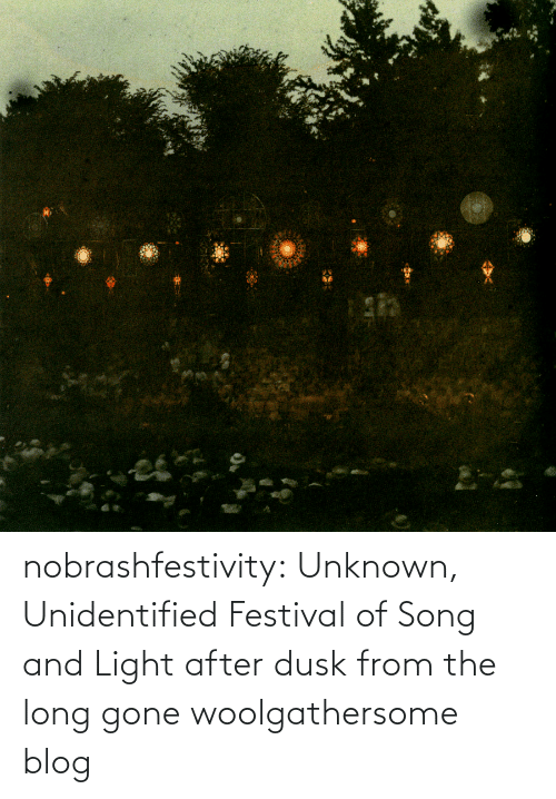 unknown: nobrashfestivity: Unknown,  Unidentified Festival of Song and Light after dusk   from the long gone woolgathersome blog