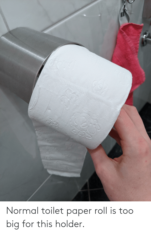 Circumference of a toilet paper tube