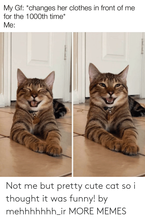 Was: Not me but pretty cute cat so i thought it was funny! by mehhhhhhh_ir MORE MEMES