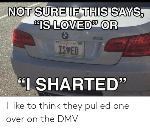 "DMV: NOT SURE IF THIS SAYS,  ""IS LOVED OR  APR California  ISWED  I SHARTED"" I like to think they pulled one over on the DMV"