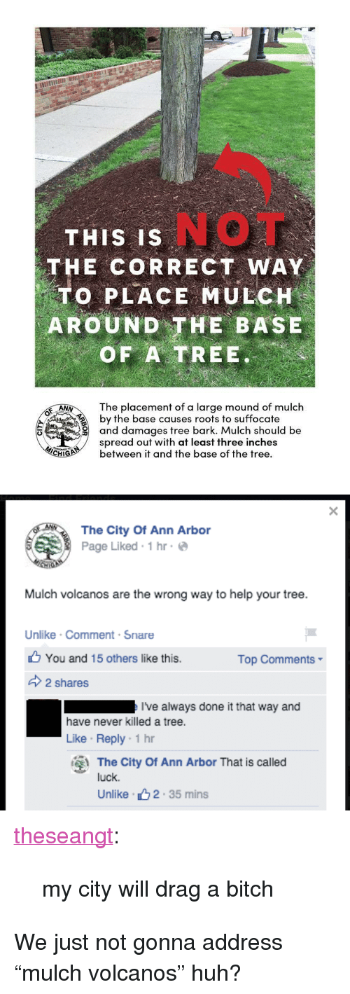 """ann arbor: NOT  THIS IS  THE CORRECT WAY  TO PLACE MULCH  AROUND THE BASE  OF A TREE.  The placement of a large mound of mulch  by the base causes roots to suffocate  and damages tree bark. Mulch should be  spread out with at least three inches  ANN\  CHbetween it and the base of the tree.   颱  The City Of Ann Arbor  Page Liked 1hr  Mulch volcanos are the wrong way to help your tree  Unlike Comment Snare  You and 15 others like this.  Top Comments-  2 shares  I've always done it that way and  have never killed a tree.  Like Reply-1 hr  The City Of Ann Arbor That is called  luck.  Unlike 2.35 mins <p><a class=""""tumblr_blog"""" href=""""http://theseangt.tumblr.com/post/118965600107"""">theseangt</a>:</p> <blockquote> <p>my city will drag a bitch</p> </blockquote>  <p>We just not gonna address """"mulch volcanos"""" huh?</p>"""