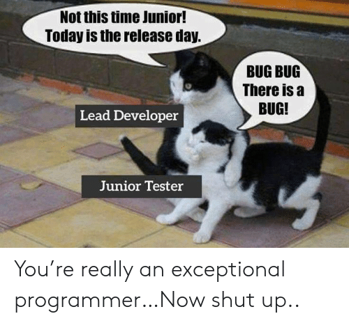 Shut Up, Time, and Today: Not this time Junior!  Today is the release day.  BUG BUG  There is a  BUG!  Lead Developer  Junior Tester You're really an exceptional programmer…Now shut up..