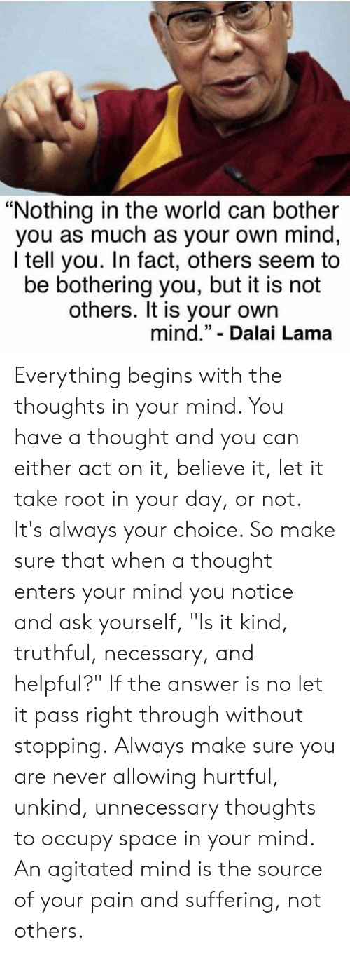 """Memes, Dalai Lama, and Space: """"Nothing in the world can bother  you as much as your own mind,  I tell you. In fact, others seem to  be bothering you, but it is not  others. It is your own  mind."""" - Dalai Lama Everything begins with the thoughts in your mind. You have a thought and you can either act on it, believe it, let it take root in your day, or not. It's always your choice. So make sure that when a thought enters your mind you notice and ask yourself, """"Is it kind, truthful, necessary, and helpful?"""" If the answer is no let it pass right through without stopping. Always make sure you are never allowing hurtful, unkind, unnecessary thoughts to occupy space in your mind. An agitated mind is the source of your pain and suffering, not others."""