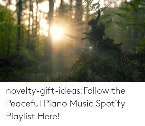 open: novelty-gift-ideas:Follow the Peaceful Piano Music Spotify Playlist Here!