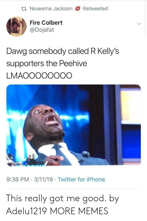 dawg: Noxeema Jackson 47 Retweeted  Fire Colbert  @Dojafat  Dawg somebody called R Kelly's  supporters the Peehive  LMAOOOOOOOO  9:38 PM.3/11/19 Twitter for iPhone This really got me good. by Adelu1219 MORE MEMES