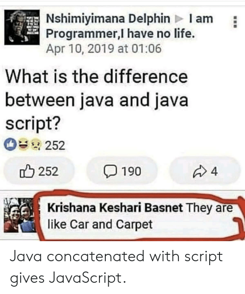 Life, Java, and What Is: Nshimiyimana Delphin Iam  Programmer,I have no life.  Apr 10, 2019 at 01:06  What is the difference  between java and java  script?  252  252  4  190  Krishana Keshari Basnet They  like Car and Carpet Java concatenated with script gives JavaScript.