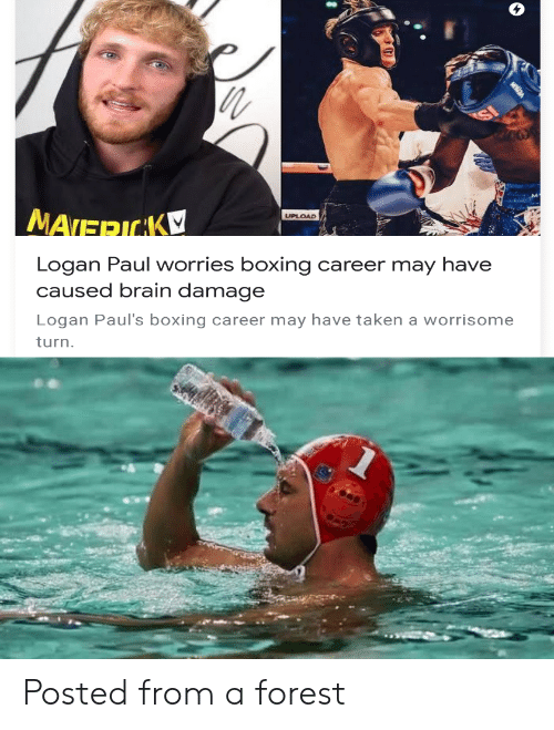 Boxing, Taken, and Brain: nth  UPLOAD  MATERICAK  Logan Paul worries boxing  caused brain damage  career may have  Logan Paul's boxing career may have taken a worrisome  turn. Posted from a forest