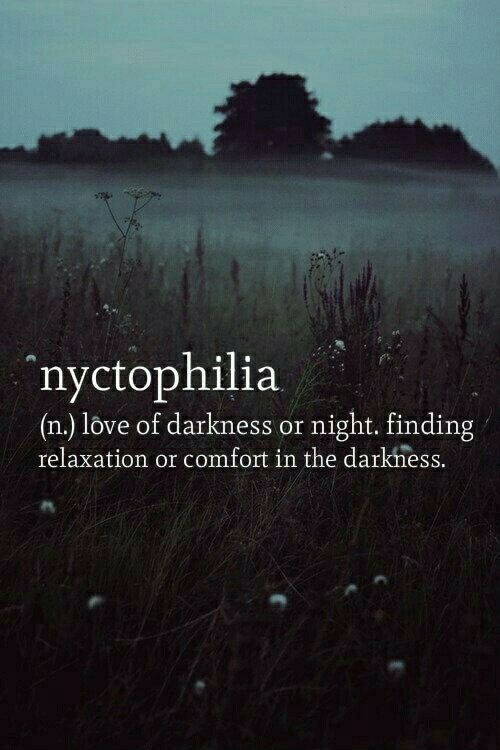 Love, Darkness, and Relaxation: nyctophilia  (n.) love of darkness or night. finding  relaxation or comfort in the darkhess.