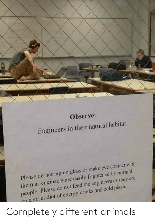 Please Do: Observe:  Engineers in their natural habitat  Please do not tap on glass or make eye contact with  them as engineers are easily frightened by normal  people. Please do not feed the engineers as they are  on a strict diet of energy drinks and cold pizza Completely different animals
