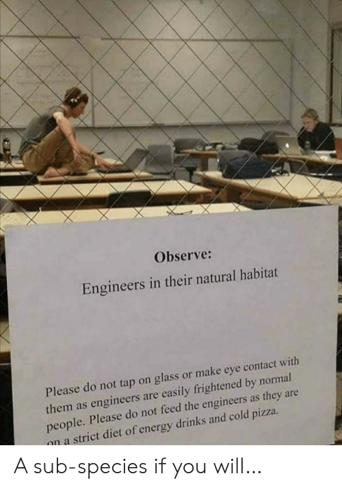 Please Do: Observe:  Engineers in their natural habitat  Please do not tap on glass or make eye contact with  them as engineers are easily frightened by normal  people. Please do not feed the engineers as they are  on a strict diet of energy drinks and cold pizza A sub-species if you will…