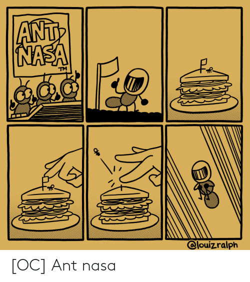 NASA: [OC] Ant nasa