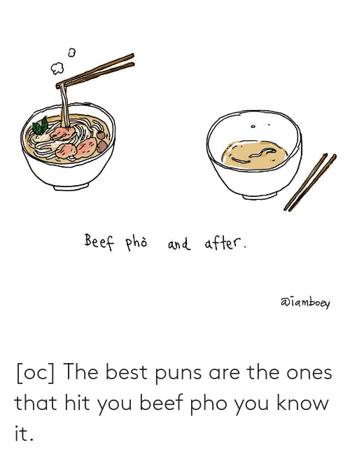 you know it: [oc] The best puns are the ones that hit you beef pho you know it.