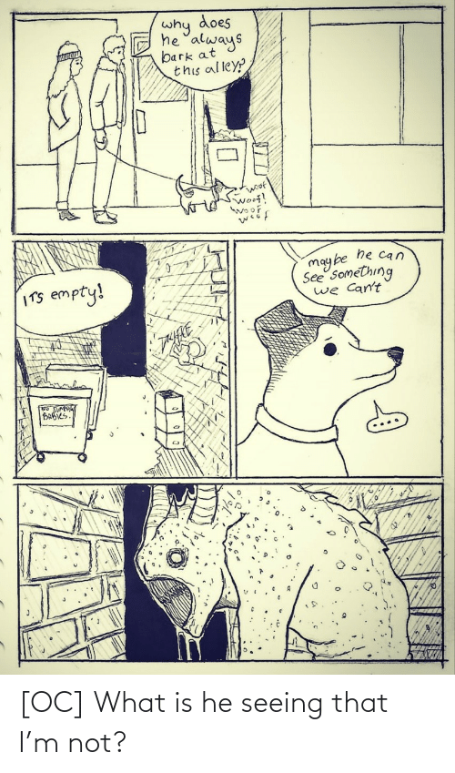 What Is: [OC] What is he seeing that I'm not?