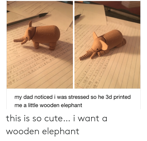 stressed: oecs  t  NES  Nes  NO  my dad noticed i was stressed so he 3d printed  me a little wooden elephant  yES  HES  1わたしはまいにち六  四時ごろうちにかえります。  hhleihT this is so cute… i want a wooden elephant