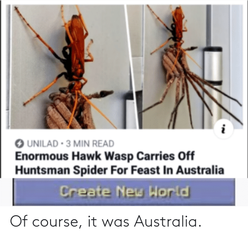 of course: Of course, it was Australia.