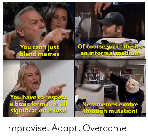 Evolve: Of course you can-it's  an informalmedium  You can't just  blend memes  You have to respect  a basic format or all  signification is lost!  New memes evolve  through mutation! Improvise. Adapt. Overcome.