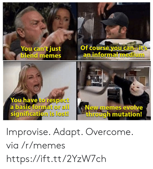 Evolve: Of course you can-it's  aninformalmedium  You can't just  blend memes  You have to respect  a basic format or all  signification is lost!  New memes evolve  through mutation! Improvise. Adapt. Overcome. via /r/memes https://ift.tt/2YzW7ch