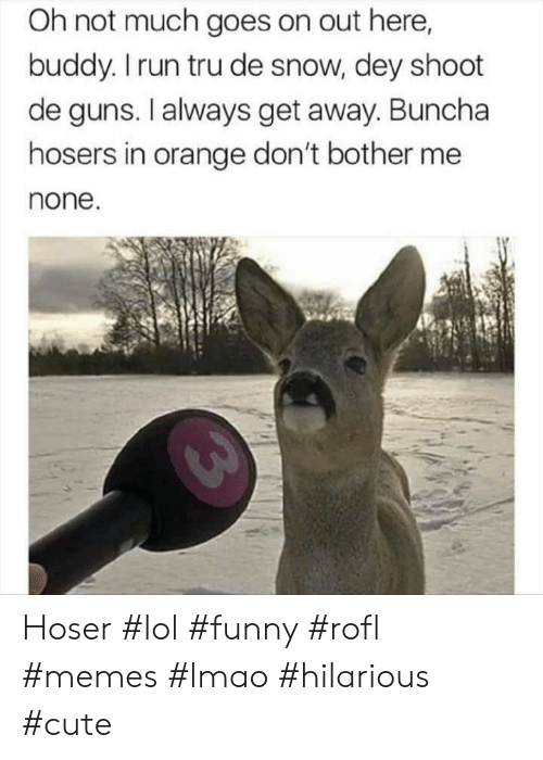 Cute, Funny, and Guns: Oh not much goes on out here,  buddy. I run tru de snow, dey shoot  de guns. I always get away. Buncha  hosers in orange don't bother me  none. Hoser #lol #funny #rofl #memes #lmao #hilarious #cute