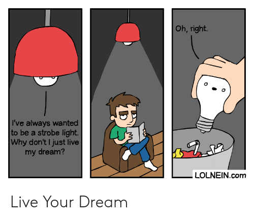 Why Dont: Oh, right.  I've always wanted  to be a strobe light.  Why don't I just live  my dream?  LOLNEIN.com  DS Live Your Dream