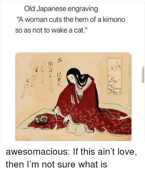 "Love, Tumblr, and Blog: Old Japanese engraving  A woman cuts the hem of a kimond  so as not to wake a cat.""  呈し  がら awesomacious:  If this ain't love, then I'm not sure what is"