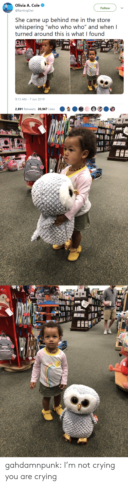 """Crying, Not Crying, and Target: Olivia A. Cole  Follow  @RantingOwl  She came up behind me in the store  whispering """"who who who"""" and when I  turned around this is what I found  9:13 AM 7 Jun 2019  2,891 Retweets 20,967 Likes gahdamnpunk: I'm not crying you are crying"""