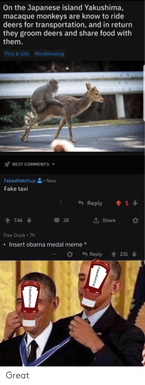 Share Food: On the Japanese island Yakushima,  macaque monkeys are know to ride  deers for transportation, and in return  they groom deers and share food with  them.  Pics & Gifs  Mindblowing  BEST COMMENTS  FakedKetchup  Now  Fake taxi  Reply  1  7.4k  38  Share  Tree-Duck 7h  Insert obama medal meme  Reply  231  Faked Ketchup  FakedKetchup Great