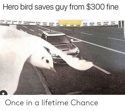 In A: Once in a lifetime Chance