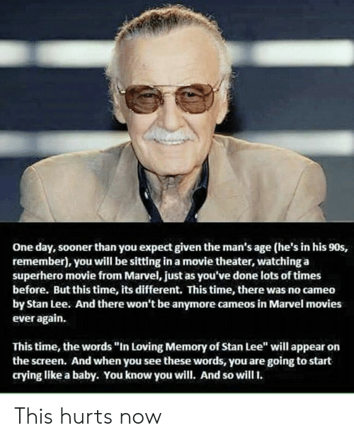 """Crying, Memes, and Movies: One day, sooner than you expect given the man's age (he's in his 90s,  remember), you will be sitting in a movie theater, watching a  superhero movie from Marvel, just as you've done lots of times  before. But this time, its different. This time, there was no cameo  by Stan Lee. And there won't be anymore cameos in Marvel movies  ever again.  This time, the words """"In Loving Memory of Stan Lee"""" will appear on  the screen. And when you see these words, you are going to start  crying like a baby. You know you will. And so will. This hurts now"""