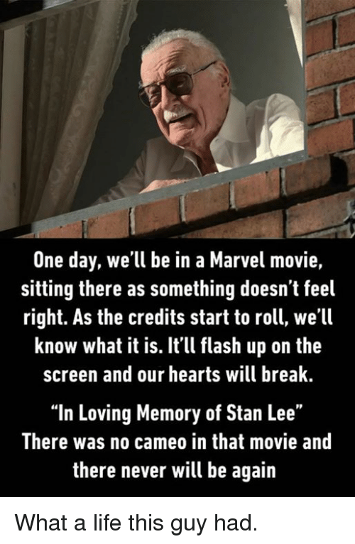 """Dank, Life, and Stan: One day, we'll be in a Marvel movie,  sitting there as something doesn t feel  right. As the credits start to roll, we'll  know what it is. Itll flash up on the  screen and our hearts will break  """"In Loving Memory of Stan Lee""""  There was no cameo in that movie and  there never will be again What a life this guy had."""