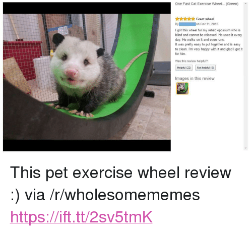 "Exercise, Happy, and Images: One Fast Cat Exercise Wheel... (Green)  AAYAGreat wheel  I got this wheel for my rehab opossum who is  blind and cannot be released. He uses it every  day. He walks on it and even runs  It was pretty easy to put together and is easy  to clean. I'm very happy with it and glad I got it  for him.  Was this review helpful?  Helpful (22) Not helpful (0)  Images in this review <p>This pet exercise wheel review :) via /r/wholesomememes <a href=""https://ift.tt/2sv5tmK"">https://ift.tt/2sv5tmK</a></p>"
