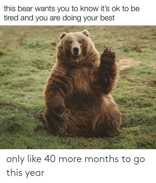 months: only like 40 more months to go this year