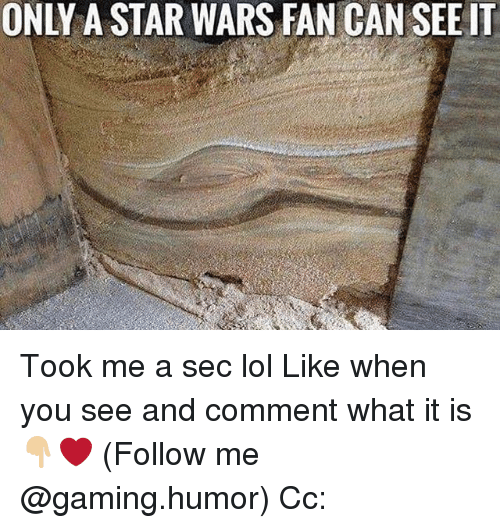 Lol, Memes, and Star Wars: ONLY STAR WARS FAN CAN SEE IT Took me a sec lol Like when you see and comment what it is👇🏼❤️ (Follow me @gaming.humor) Cc: