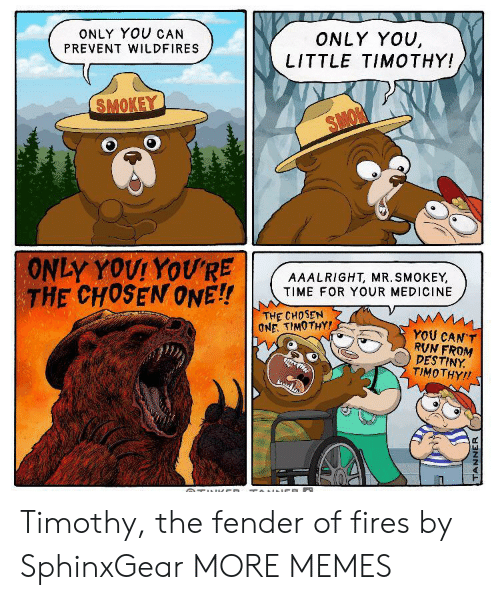Dank, Destiny, and Memes: ONLY YOU CAN  ONLY YOU,  LITTLE TIMOTHY!  PREVENT WILDFIRES  SMOKEY  SMON  ONLY YOUI YOU'RE  THE CHOSEN ONE!!  AAALRIGHT, MR. SMOKEY,  TIME FOR YOUR MEDICINE  THE CHOSEN  ONE. TIMOTHY!  YOU CAN'T  RVN FROM  DESTINY  TIMOTHY!  TUl CD TOINNCE  TANNER Timothy, the fender of fires by SphinxGear MORE MEMES
