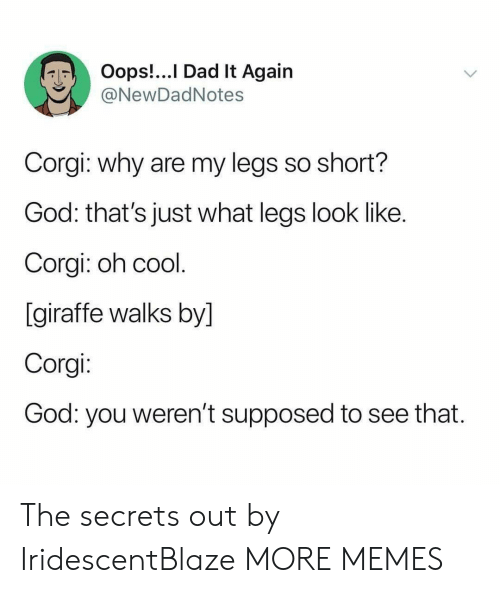 Corgi, Dad, and Dank: Oops!...I Dad It Again  @NewDadNotes  Corgi: why are my legs so short?  God: that's just what legs look like.  Corgi: oh cool.  [giraffe walks by]  Corgi:  God: you weren't supposed  to see that. The secrets out by IridescentBlaze MORE MEMES