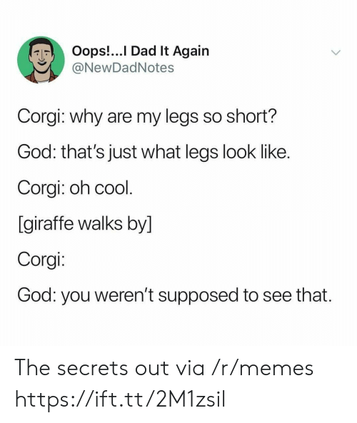 Corgi, Dad, and God: Oops!...I Dad It Again  @NewDadNotes  Corgi: why are my legs so short?  God: that's just what legs look like.  Corgi: oh cool.  [giraffe walks by]  Corgi:  God: you weren't supposed  to see that. The secrets out via /r/memes https://ift.tt/2M1zsil