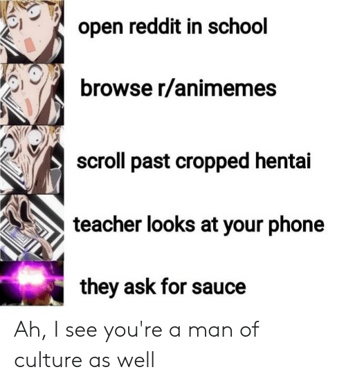 Open Reddit in School Browse Ranimemes Scroll Past Cropped Hentai